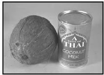 Canned coconut milk, widely available in supermarkets, may be substituted for freshly made coconut milk. Fresh coconut milk should be used immediately, since it loses its flavor even if refrigerated. EPD Photos
