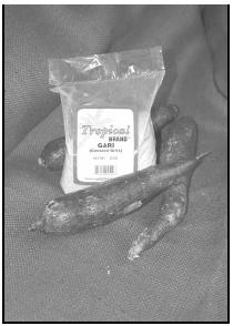 Cassava is a firm root vegetable with a shiny white skin and creamy white flesh. West Africans use it to make flour, called gari. Packaged gari can be purchased in specialty stores worldwide. EPD Photos